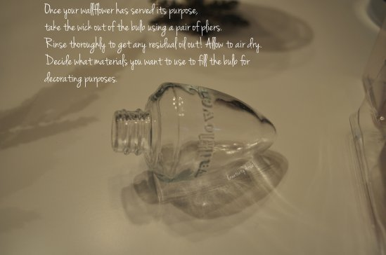 empty bulb